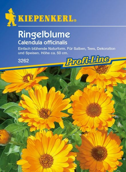 Kiepenkerl Ringelblume - Calendula officinalis