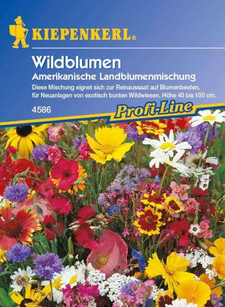 Kiepenkerl Amerikanische Landblumenmischung