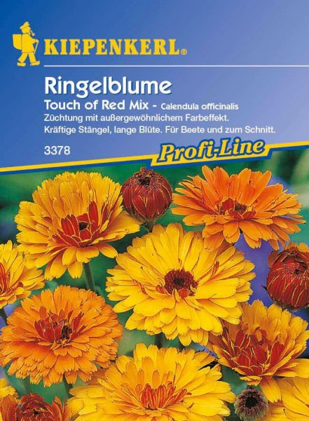 Kiepenkerl Ringelblume Touch of Red Mix - Calendula officinalis