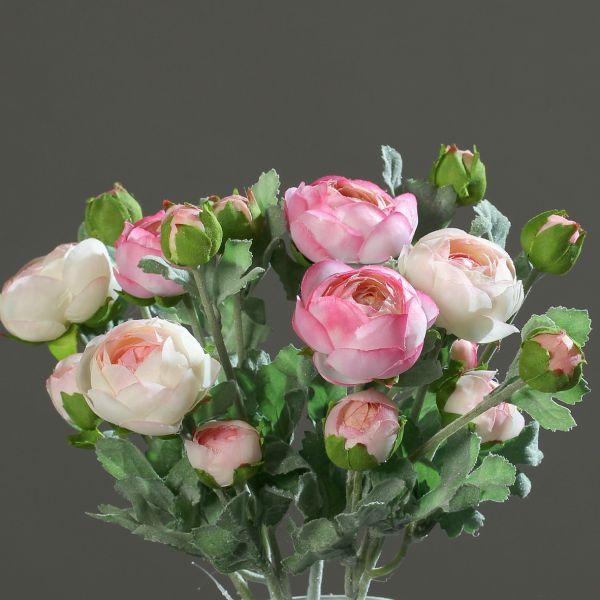 Ranunkelpick cream-pink combination