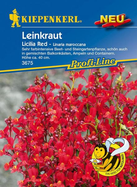 Kiepenkerl Leinkraut Licilia Red - Linaria maroccana