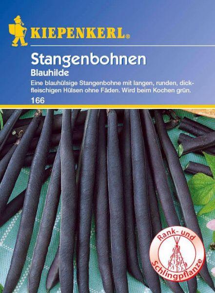Kiepenkerl Stangenbohnen Blauhilde