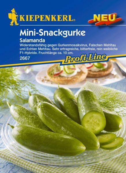 Kiepenkerl Mini-Snackgurke Salamanda