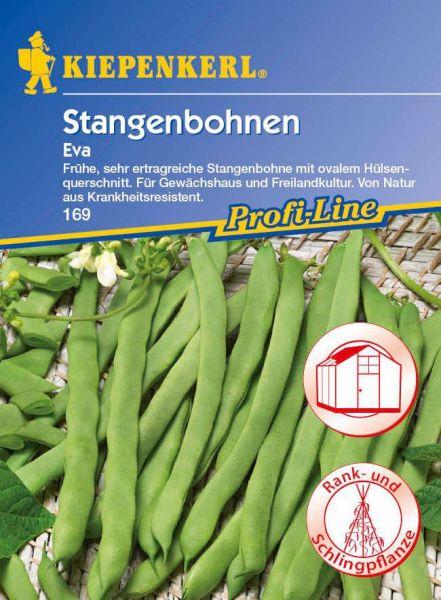 Kiepenkerl Stangenbohnen Eva