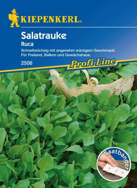 Kiepenkerl Salatrauke Ruca - Saatband