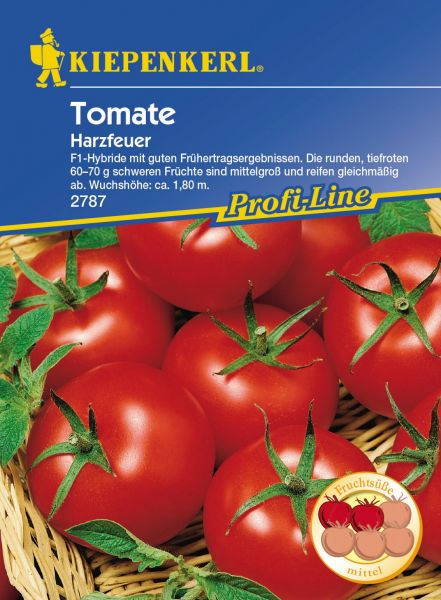 Kiepenkerl Tomate Harzfeuer