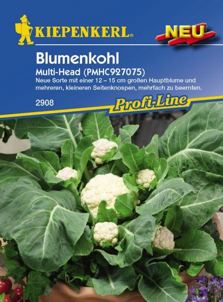 Kiepenkerl Blumenkohl Multi-Head (PMHC927075)