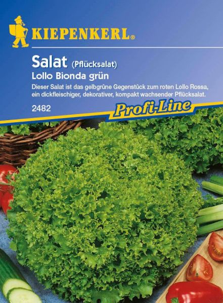 Kiepenkerl Salat (Pflücksalat) Lollo Bionda grün