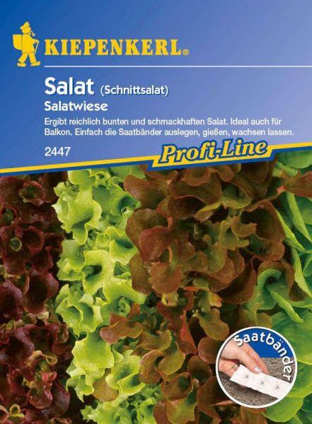 Kiepenkerl Salat (Schnittsalat) Babyleaf-Salatwiese - Saatband