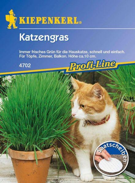 Kiepenkerl Katzengras Saatscheiben