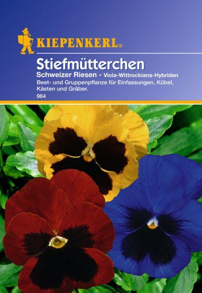 Kiepenkerl Stiefmütterchen Schweizer Riesen - Viola-Wittrockiana-Hybriden
