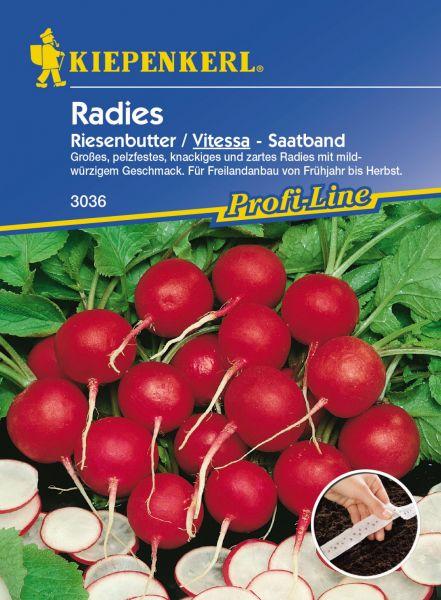 Kiepenkerl Radies Riesenbutter / Vitessa - Saatband