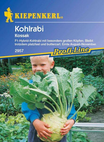 Kiepenkerl Kohlrabi Kossak