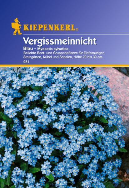 Kiepenkerl Vergissmeinnicht Blau - Myosotis sylvatica