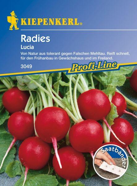 Kiepenkerl Radies Lucia - Saatband