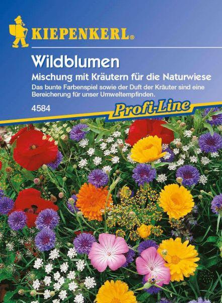 Kiepenkerl Wildblumen Mischung mit Kräutern für die Naturwiese
