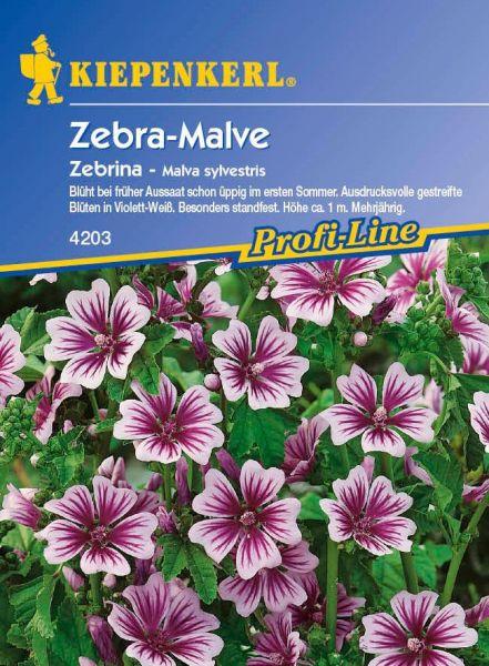 Kiepenkerl Zebra-Malve Zebrina - Malva sylvestris