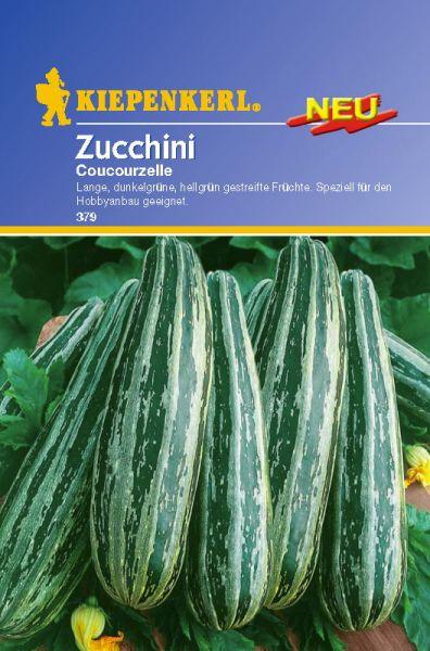 Kiepenkerl Zucchini Coucourzelle