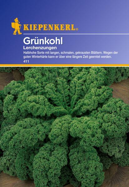 Kiepenkerl Grünkohl Lerchenzungen - Brassica oleracea var. sabellica