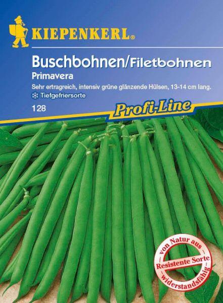 Kiepenkerl Buschbohnen/Filetbohnen Primavera