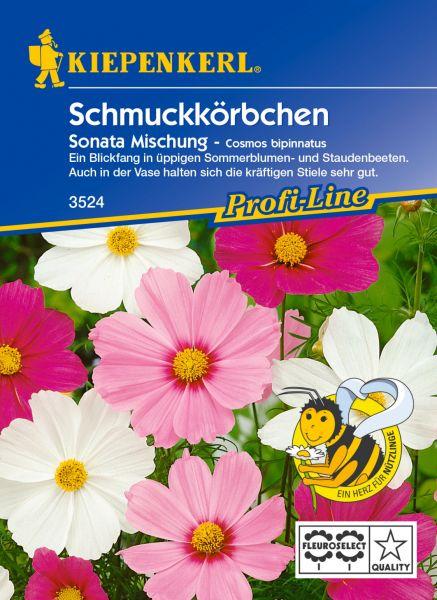 Kiepenkerl Schmuckkörbchen Sonata Mischung - Cosmos bipinnatus