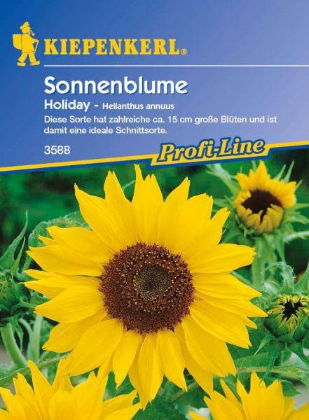 Kiepenkerl Sonnenblume Holiday - Helianthus annuus
