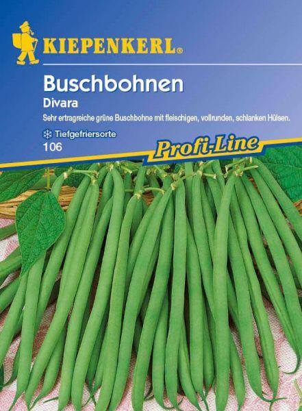 Kiepenkerl Buschbohnen Divara