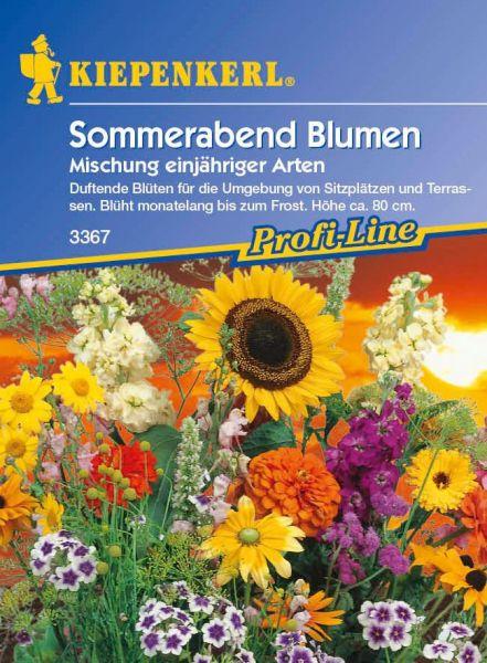 Kiepenkerl Sommerabend Blumen Mischung einjähriger Arten