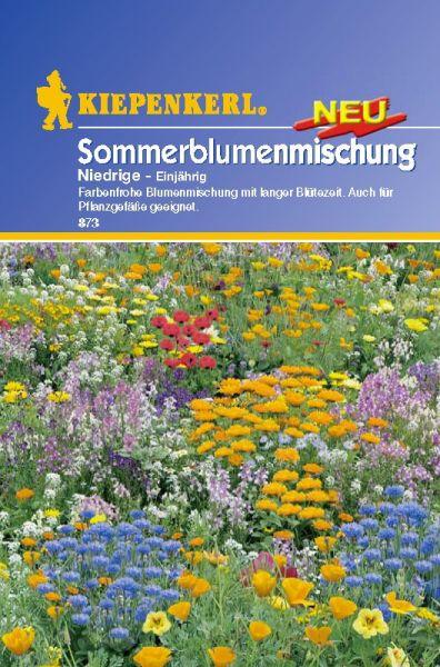 Kiepenkerl Sommerblumenmischung - Niedrige - Einjährig